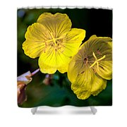 Yellow Is Gold Among The Flowers Shower Curtain