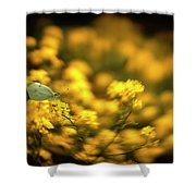 Yellow Island Shower Curtain