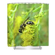 Yellow Jacket Shower Curtain