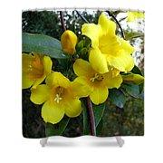 Yellow Jasmine Shower Curtain