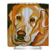 Yellow Lab Amazing Grace Shower Curtain