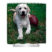 Yellow Labrador Retriever Puppy Shower Curtain