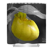 Yellow Lady Slipper Partial Shower Curtain