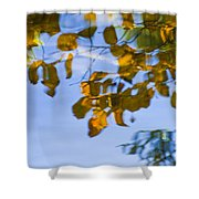Yellow Leaf Reflections Shower Curtain