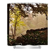 Yellow Leaves In The Mist Shower Curtain