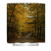 Yellow Leaves Road Shower Curtain