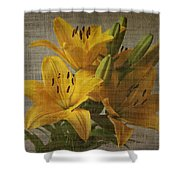 Yellow Lilies With Old Canvas Texture Background Shower Curtain