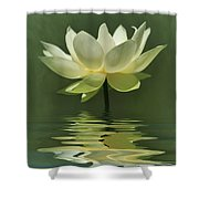 Yellow Lily With Reflections Shower Curtain