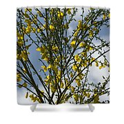 Yellow Little Flowers Shower Curtain