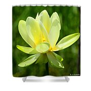 Yellow Lotus Shower Curtain