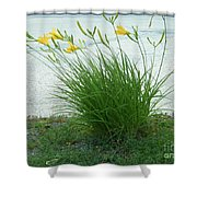 Yellow Love  Photography By Connie J Lee Shower Curtain
