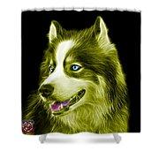 Yellow Modern Siberian Husky Dog Art - 6024 - Bb Shower Curtain