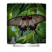 Yellow Mormon Shower Curtain