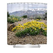 Yellow Mountain Blooms Shower Curtain by Margaret Pitcher