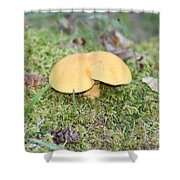 Yellow Mushroom Shower Curtain
