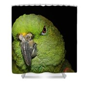 Yellow-naped Amazon Parrot Shower Curtain