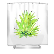 Yellow Octopus Agave Shower Curtain