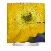 Yellow On Purple Shower Curtain