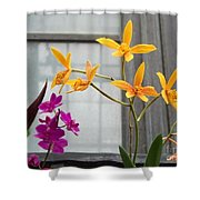 Yellow Orange And Purple Flowers Shower Curtain