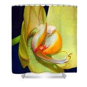 Yellow Phaelanopsis Shower Curtain