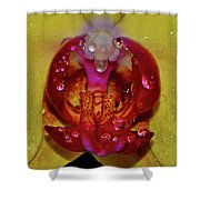 Yellow Phalaenopsis Centerpiece - Orchid And Raindrops 003 Shower Curtain