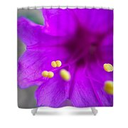 Yellow Pistil Shower Curtain