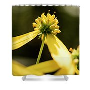 Yellow Pollinate Shower Curtain