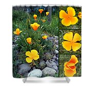 Yellow Poppies Collage  Shower Curtain