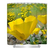 Yellow Poppy Flower Meadow Landscape Art Prints Baslee Troutman Shower Curtain