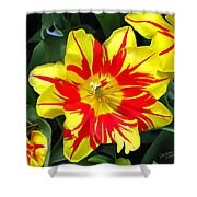 Yellow Red Flower Shower Curtain