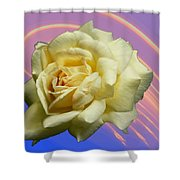 Yellow Rose 3 Shower Curtain