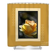 Yellow Rose Bud Dreams With Design Shower Curtain