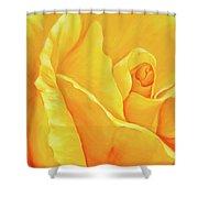 Yellow Rose Detail Shower Curtain