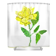 Yellow Rose, Painting Shower Curtain