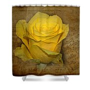 Yellow Rose With Old Notes Paper On The Background Shower Curtain