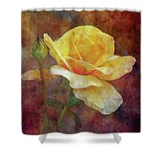 Yellow Rose With Raindrops 3590 Idp_2 Shower Curtain