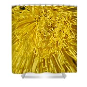 Yellow Strings Shower Curtain