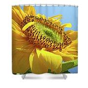 Yellow Sunflower Blue Sky Art Prints Baslee Troutman Shower Curtain