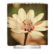 Yellow Sunflower Shower Curtain