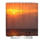 Yellow Sunrise And Three Birds Shower Curtain