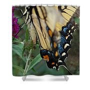 Yellow Swallow Shower Curtain