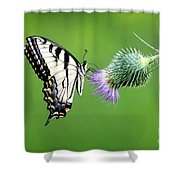 Yellow Swallow Tail 2 Shower Curtain