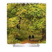 Yellow Trees In Fall Shower Curtain