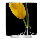 Yellow Tulip In Striped Vase Shower Curtain