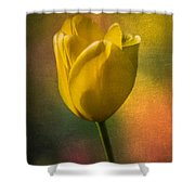 Yellow Tulip Textures Of Spring Shower Curtain