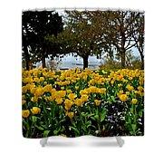 Yellow Tulips Of Fairhope Alabama Shower Curtain