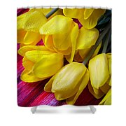 Yellow Tulips With Dew Drops Shower Curtain