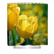 Yellow Twins Shower Curtain