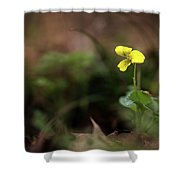 Yellow Violet Shower Curtain