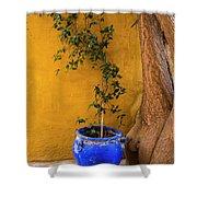 Yellow Wall, Blue Pot Shower Curtain